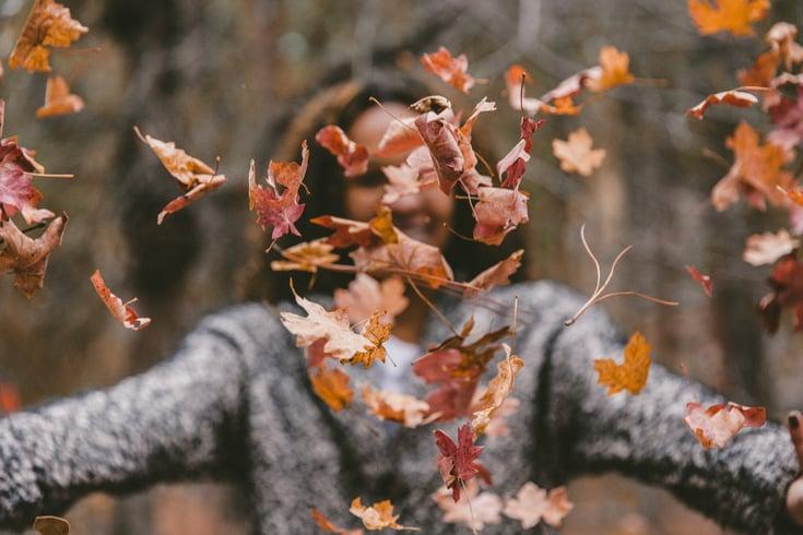 Já preparou a sua casa para o outono?