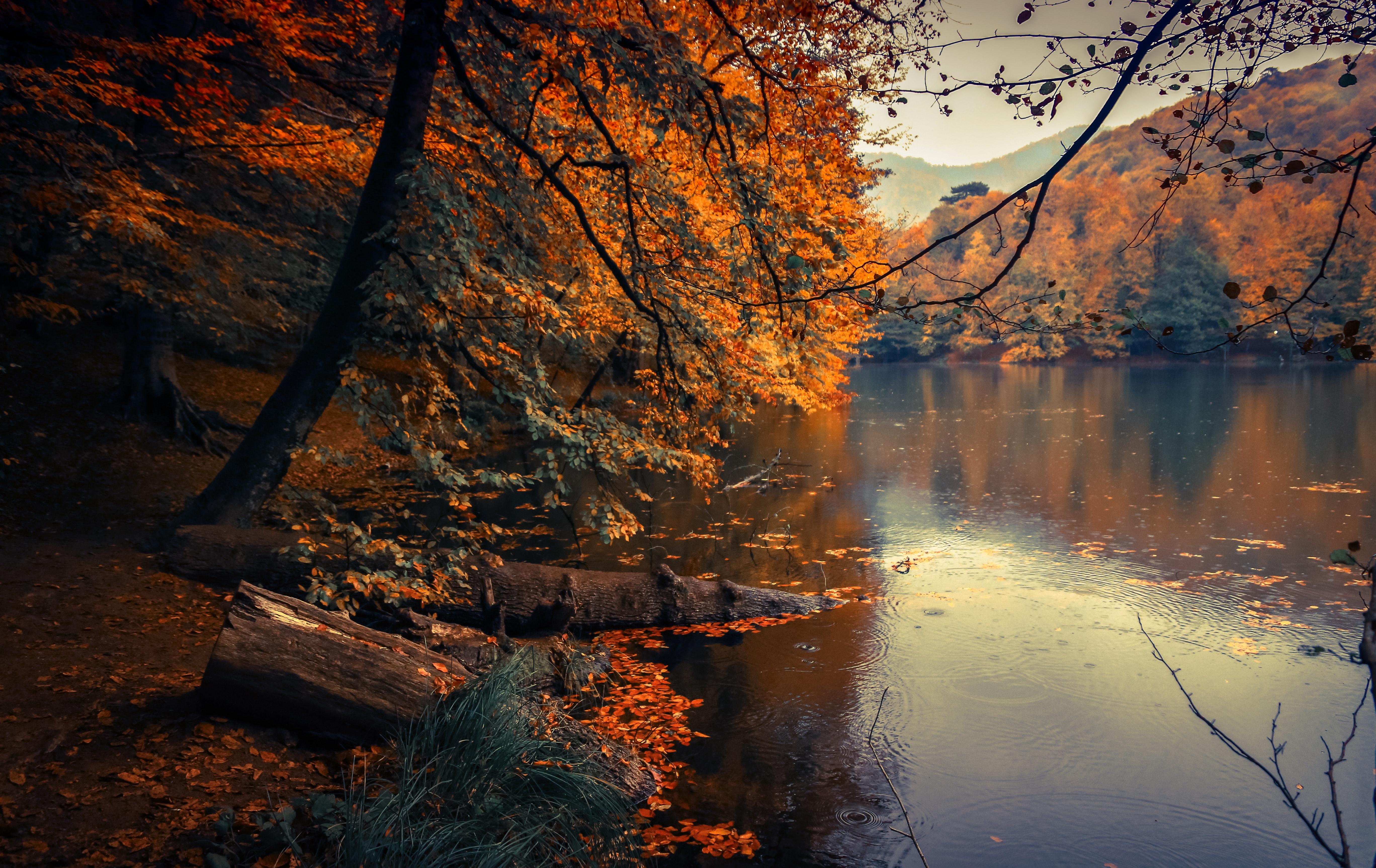 Viajar no Outono? 5 locais para fugir à rotina